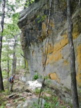 Witts Springs Bluff