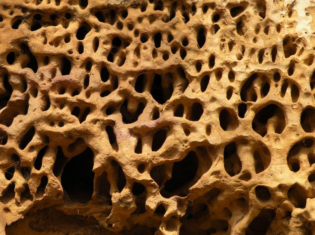 Honeycomb weathering in sandstone