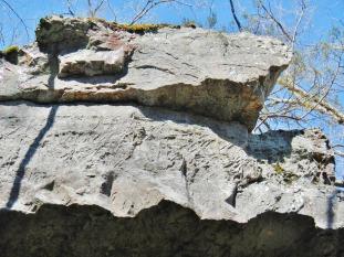 Deformation bands in massive sandstone near Middle Fork north of Shirley